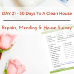 Day 21 – 30 Day House Cleaning Challenge: Repairs, Mending & House Survey