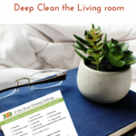 Day 3 – 30 Day House Cleaning Challenge: Deep Clean The Living Room & Entrance